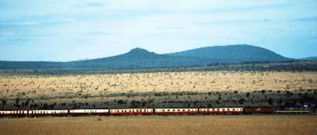 jambo-train